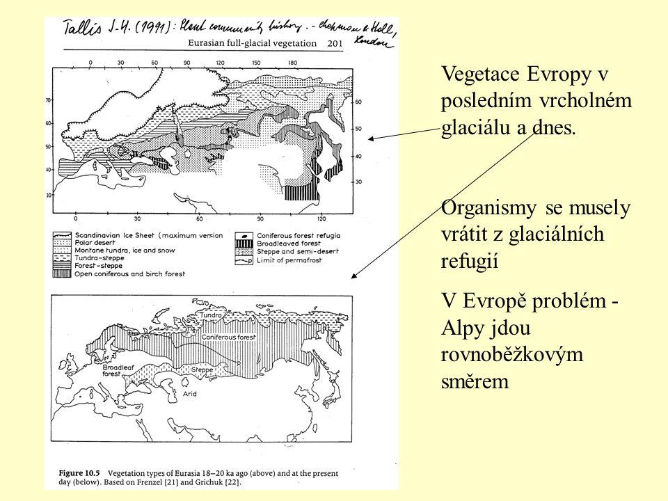 Vegetace Evropy v posledním vrcholném glaciálu a dnes.