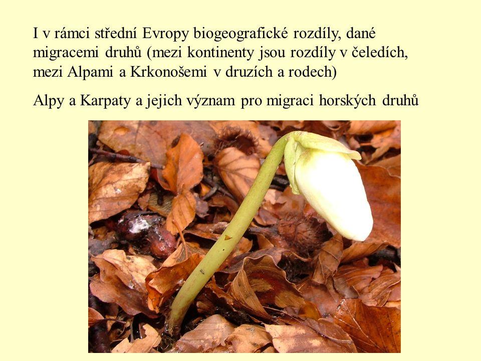 I v rámci střední Evropy biogeografické rozdíly, dané migracemi druhů (mezi kontinenty jsou rozdíly v čeledích, mezi Alpami a Krkonošemi v druzích a rodech)