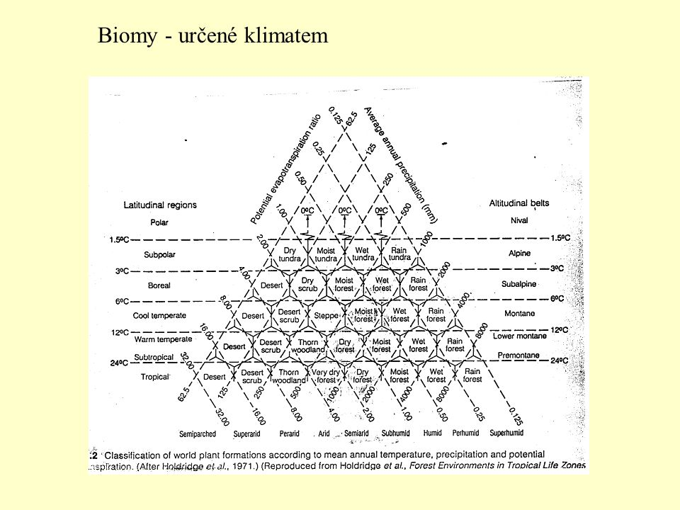 Biomy - určené klimatem