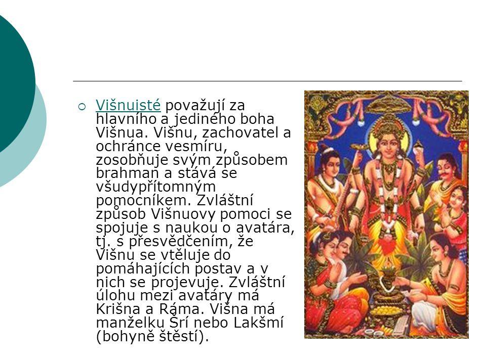 Višnuisté považují za hlavního a jediného boha Višnua