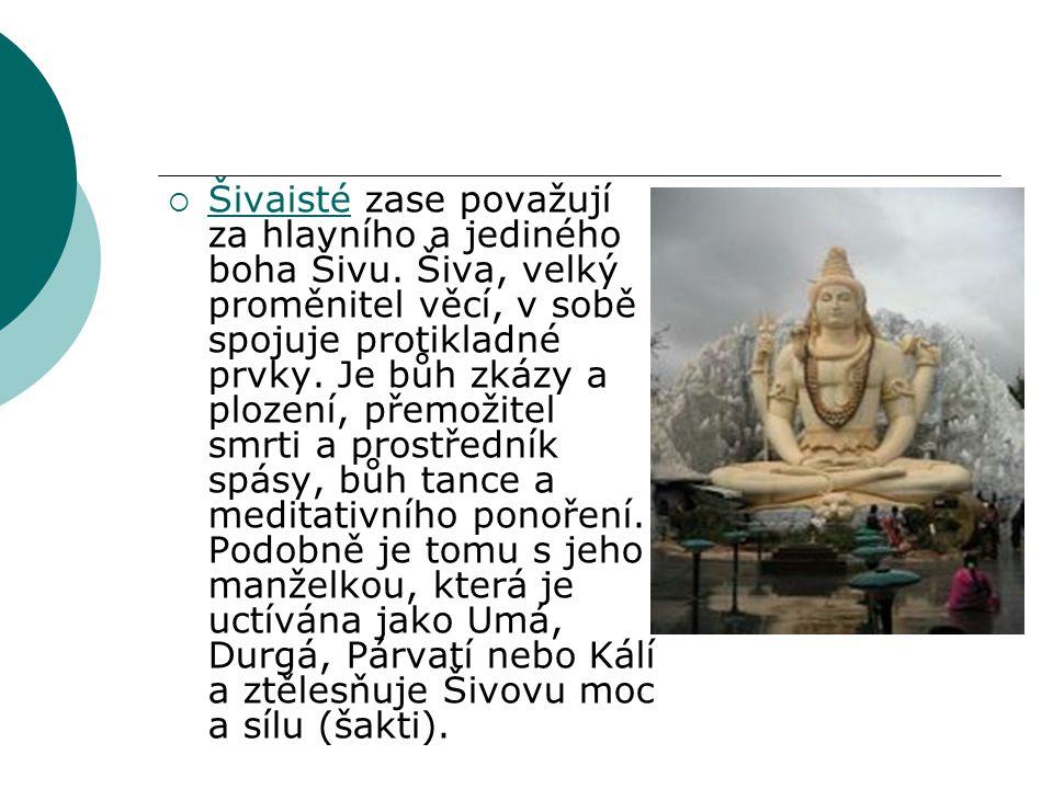 Šivaisté zase považují za hlavního a jediného boha Šivu