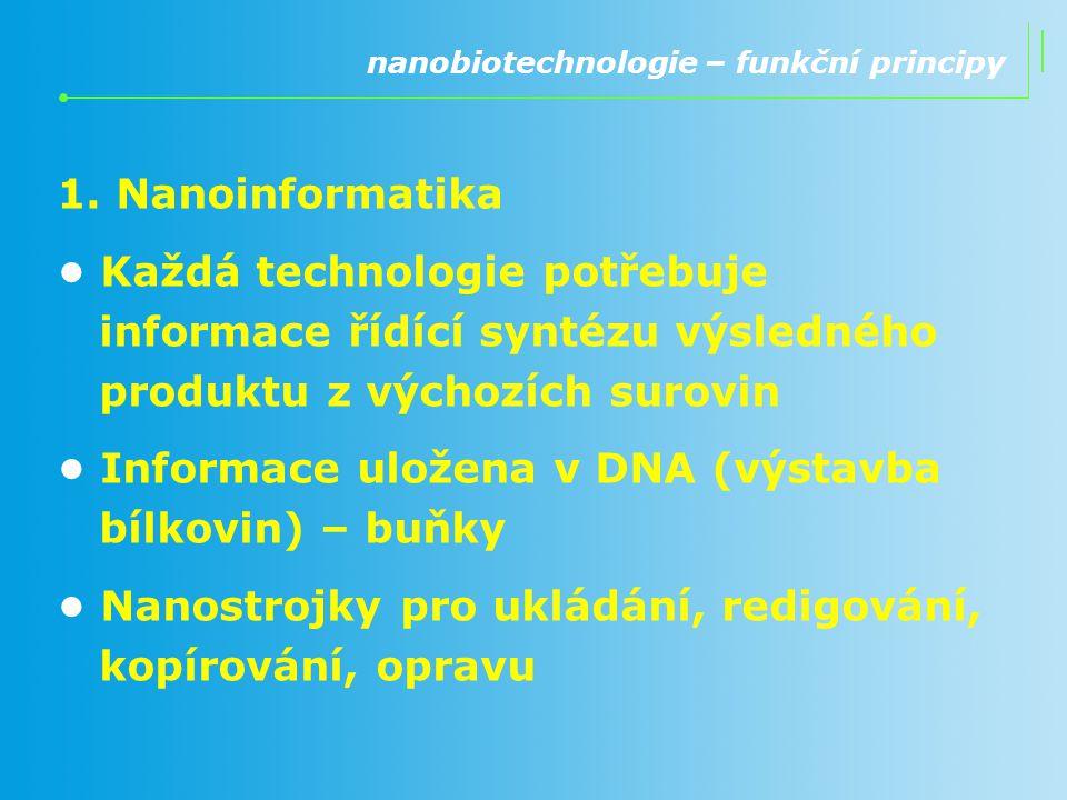 • Informace uložena v DNA (výstavba bílkovin) – buňky