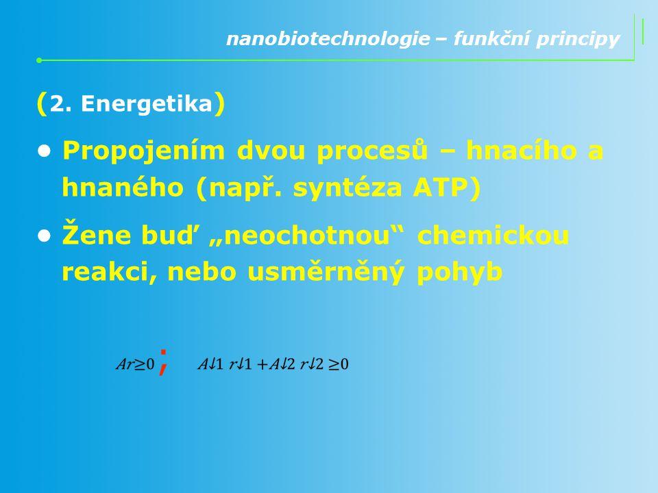 • Propojením dvou procesů – hnacího a hnaného (např. syntéza ATP)