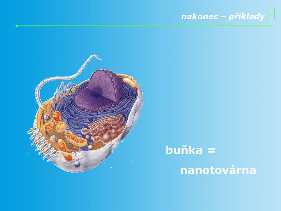 nakonec – příklady buňka = nanotovárna