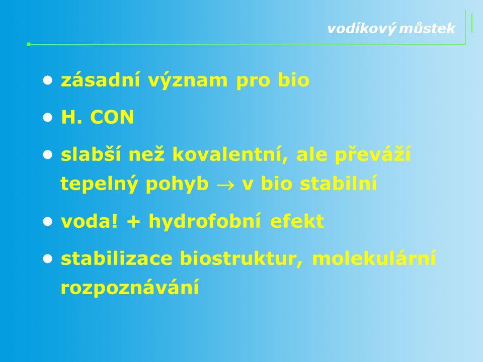 • zásadní význam pro bio • H. CON