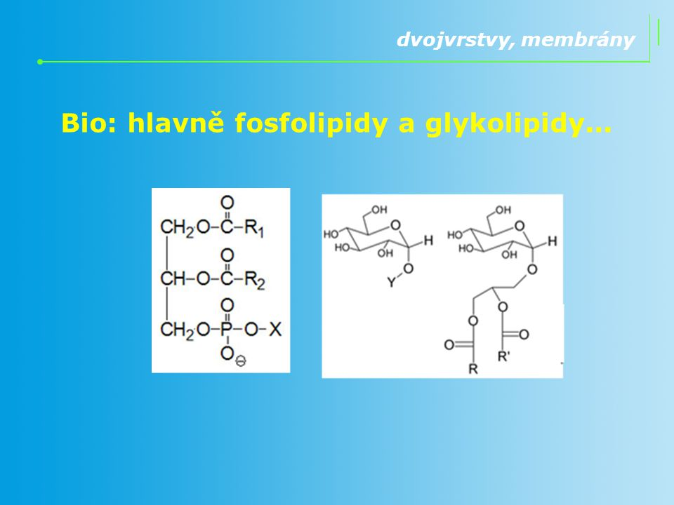 Bio: hlavně fosfolipidy a glykolipidy...