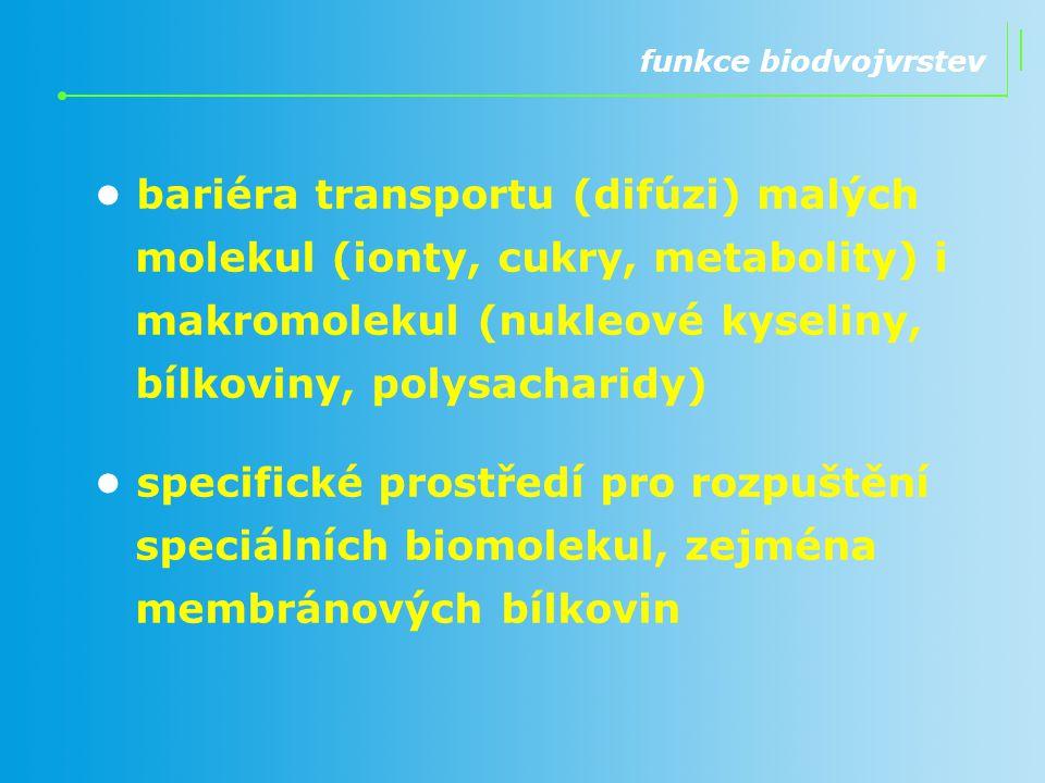funkce biodvojvrstev