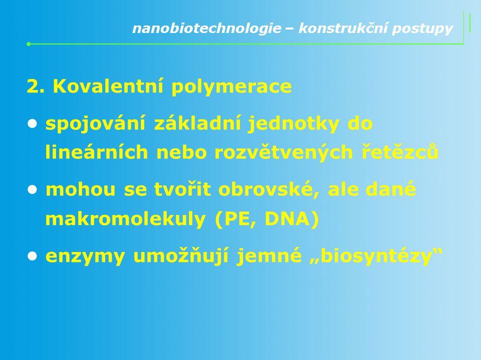 2. Kovalentní polymerace