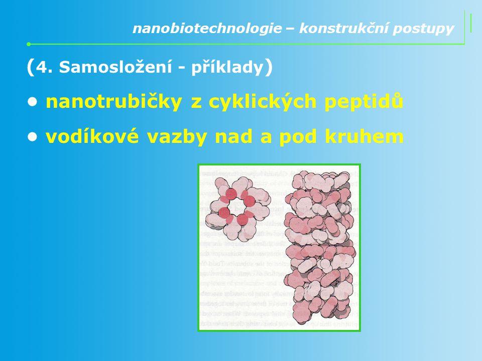 (4. Samosložení - příklady) • nanotrubičky z cyklických peptidů
