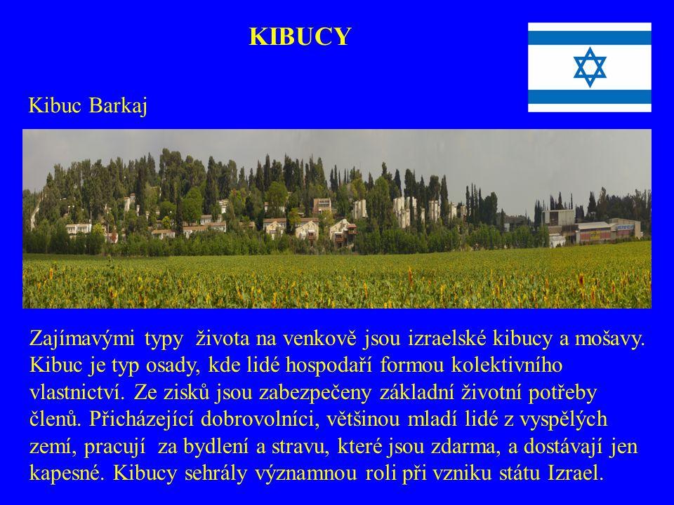 KIBUCY Kibuc Barkaj. Zajímavými typy života na venkově jsou izraelské kibucy a mošavy.
