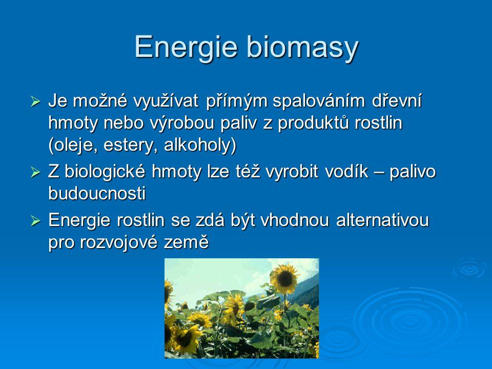 Energie biomasy Je možné využívat přímým spalováním dřevní hmoty nebo výrobou paliv z produktů rostlin (oleje, estery, alkoholy)