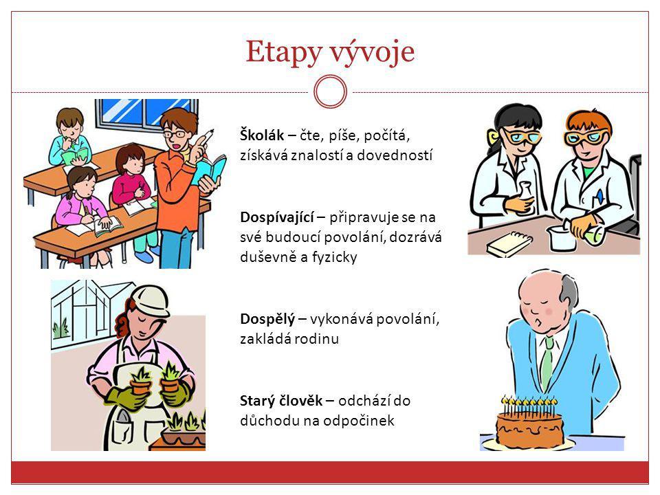 Etapy vývoje Školák – čte, píše, počítá, získává znalostí a dovedností
