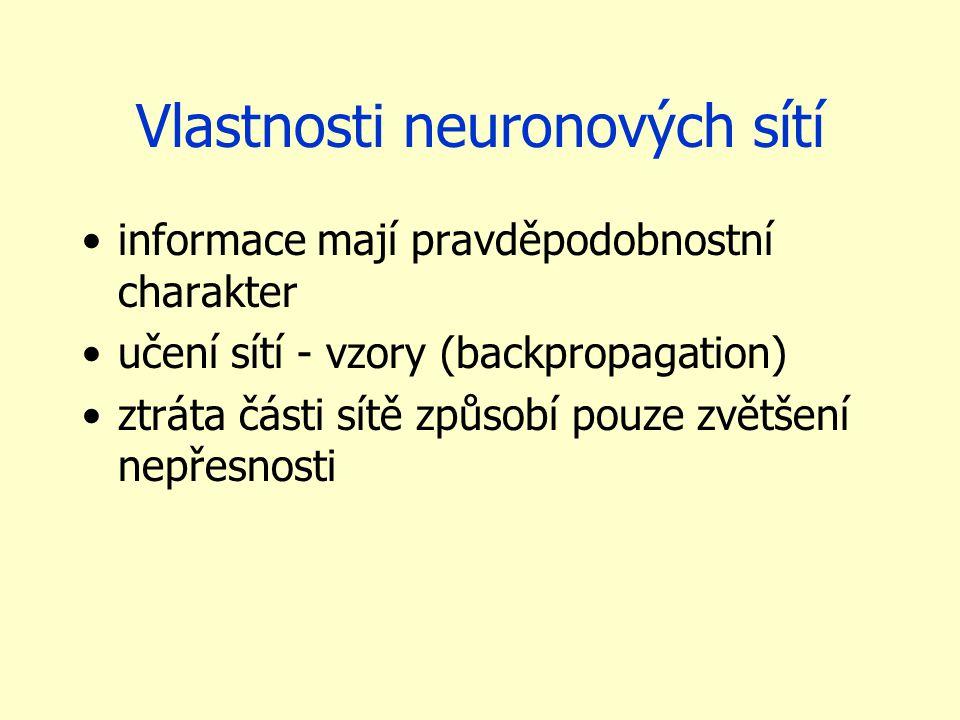 Vlastnosti neuronových sítí
