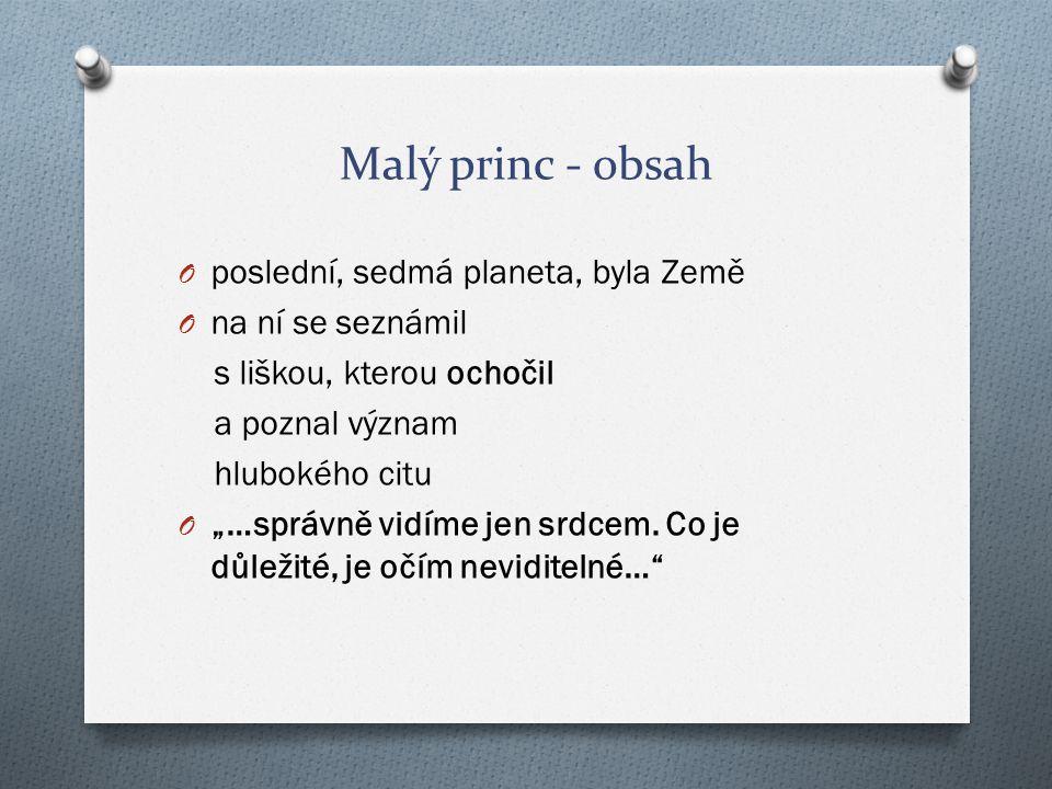 Malý princ - obsah poslední, sedmá planeta, byla Země