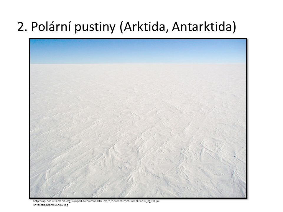 2. Polární pustiny (Arktida, Antarktida)