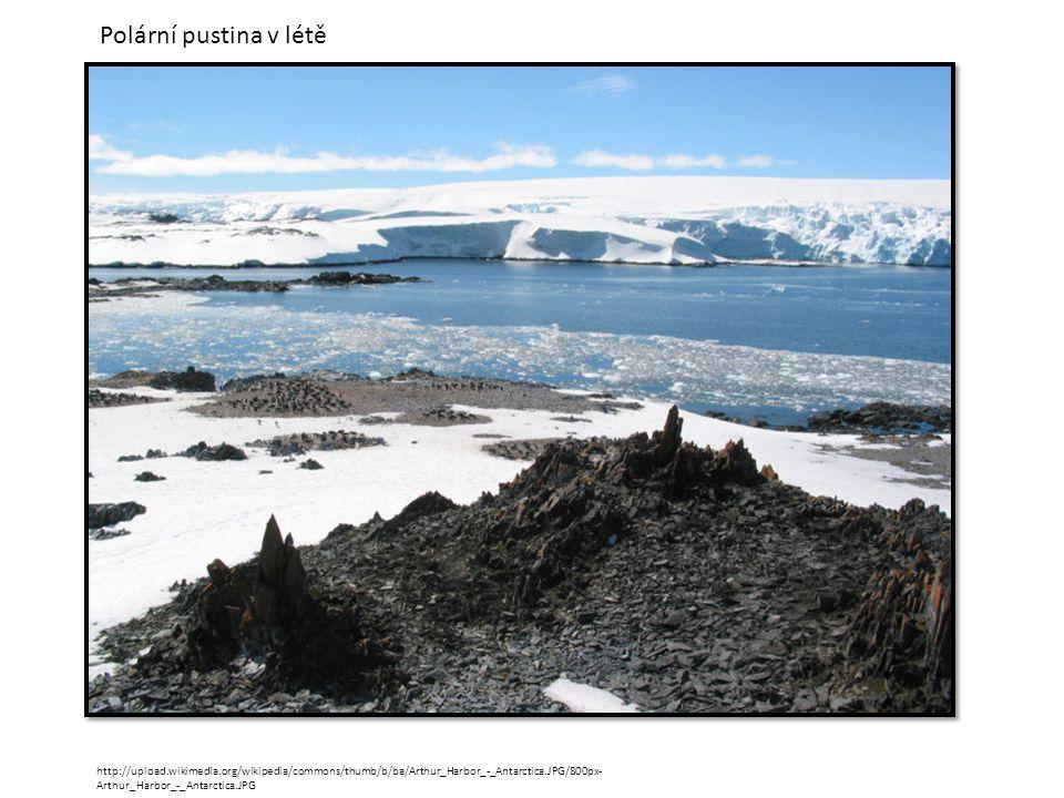 Polární pustina v létě http://upload.wikimedia.org/wikipedia/commons/thumb/b/ba/Arthur_Harbor_-_Antarctica.JPG/800px-Arthur_Harbor_-_Antarctica.JPG.