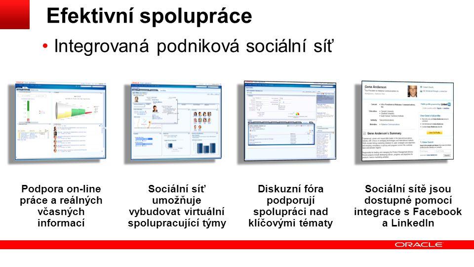 Efektivní spolupráce Integrovaná podniková sociální síť