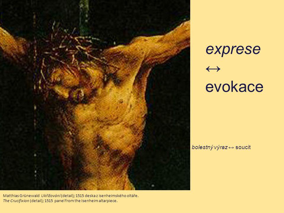 exprese ↔ evokace bolestný výraz ↔ soucit