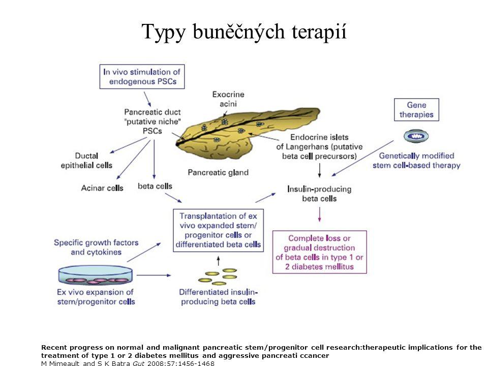 Typy buněčných terapií