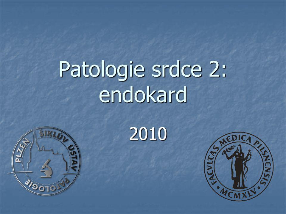 Patologie srdce 2: endokard