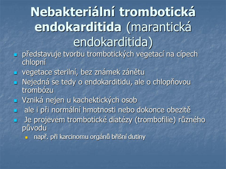Nebakteriální trombotická endokarditida (marantická endokarditida)