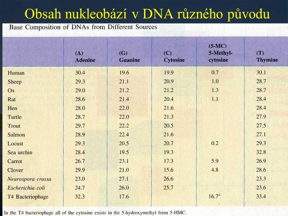 Obsah nukleobází v DNA různého původu
