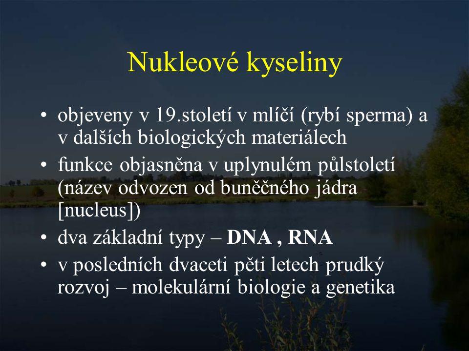Nukleové kyseliny objeveny v 19.století v mlíčí (rybí sperma) a v dalších biologických materiálech.