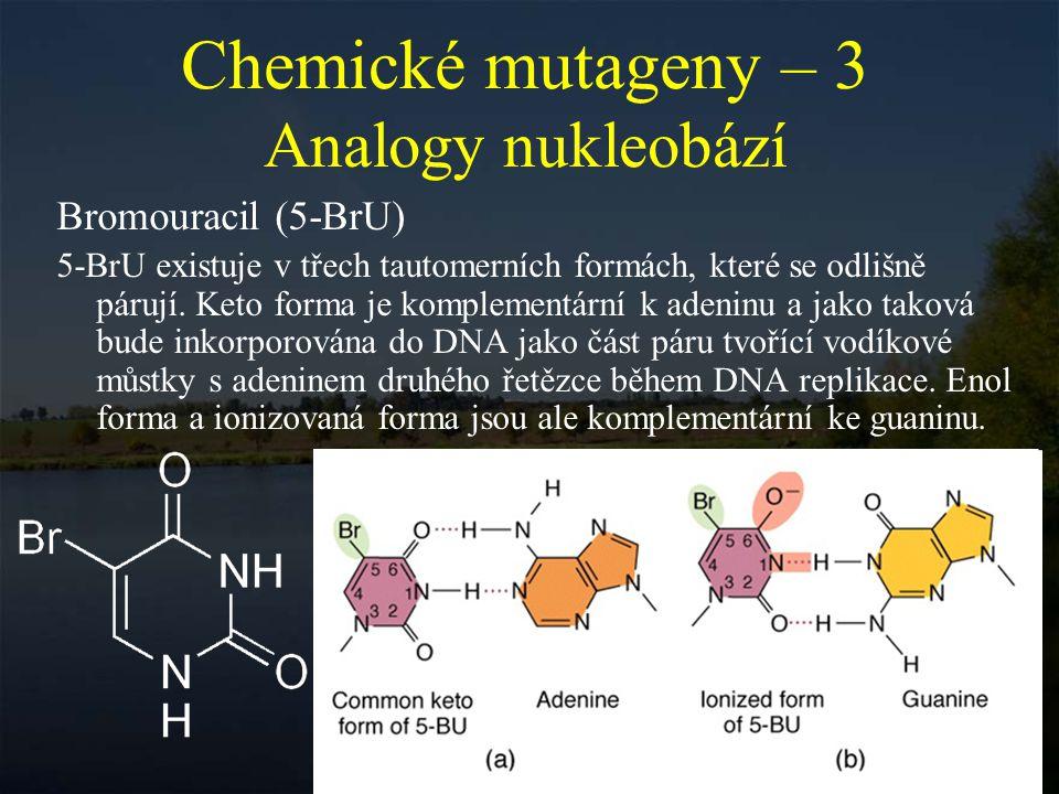 Chemické mutageny – 3 Analogy nukleobází