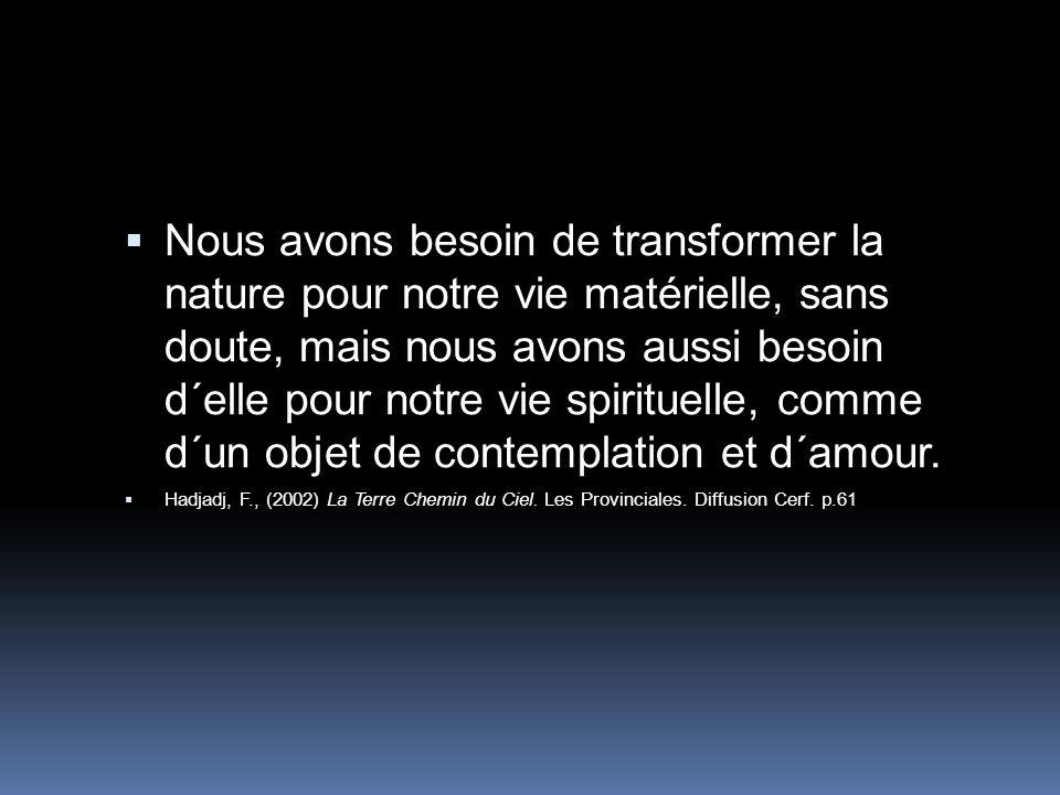 Nous avons besoin de transformer la nature pour notre vie matérielle, sans doute, mais nous avons aussi besoin d´elle pour notre vie spirituelle, comme d´un objet de contemplation et d´amour.