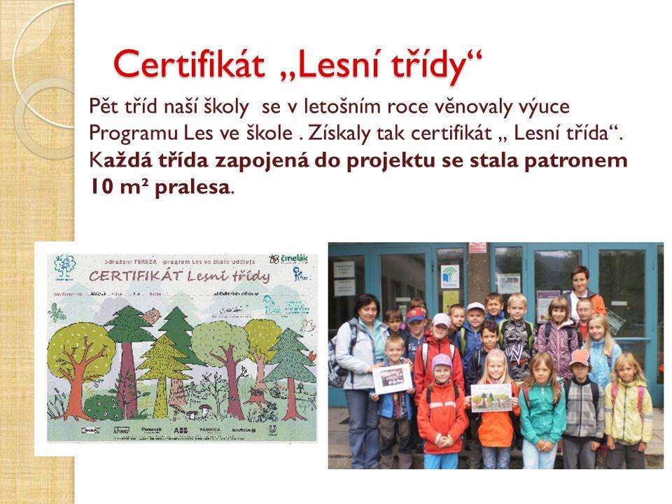 """Certifikát """"Lesní třídy"""