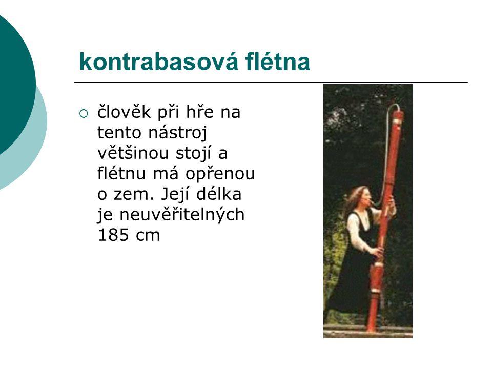 kontrabasová flétna člověk při hře na tento nástroj většinou stojí a flétnu má opřenou o zem.