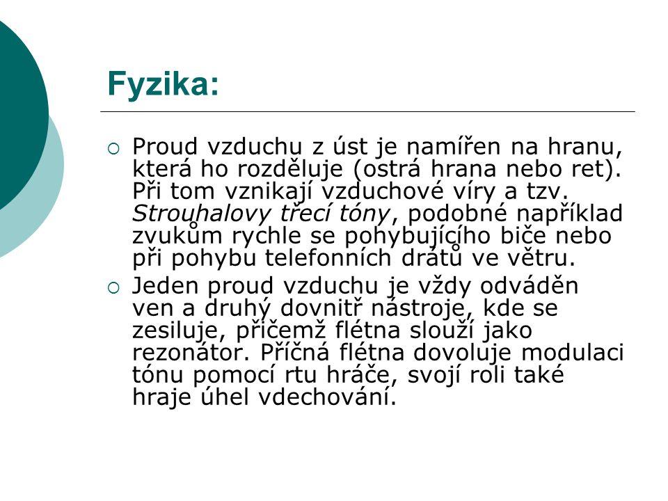 Fyzika: