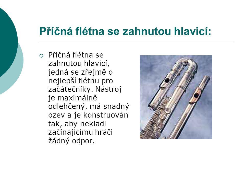 Příčná flétna se zahnutou hlavicí: