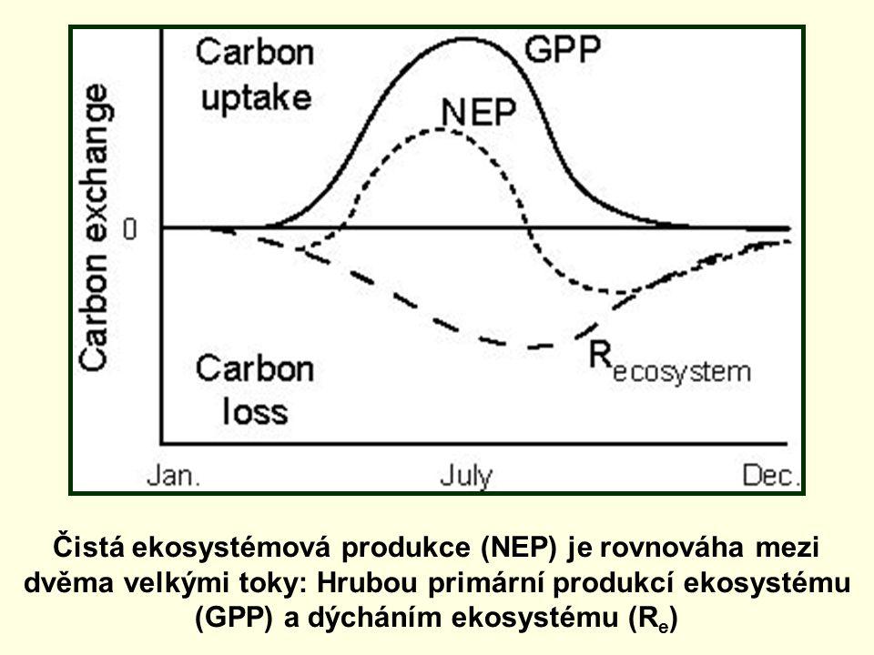 Čistá ekosystémová produkce (NEP) je rovnováha mezi dvěma velkými toky: Hrubou primární produkcí ekosystému (GPP) a dýcháním ekosystému (Re)