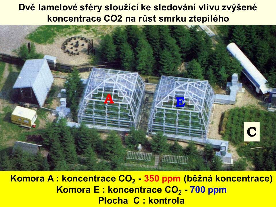 Dvě lamelové sféry sloužící ke sledování vlivu zvýšené koncentrace CO2 na růst smrku ztepilého