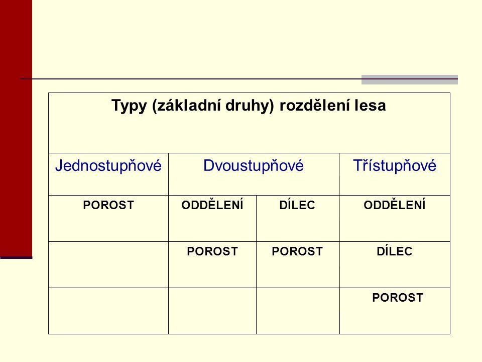 Typy (základní druhy) rozdělení lesa