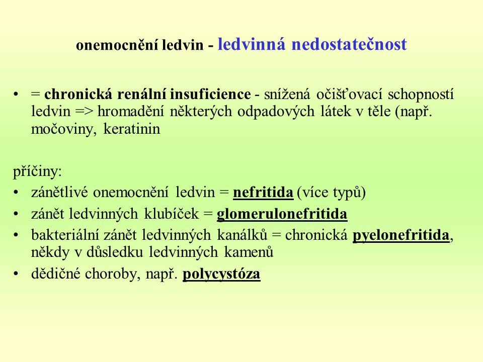 onemocnění ledvin - ledvinná nedostatečnost
