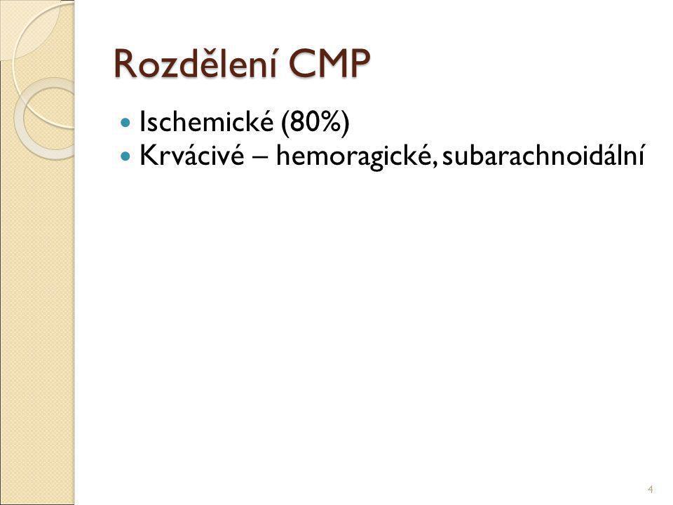 Rozdělení CMP Ischemické (80%)