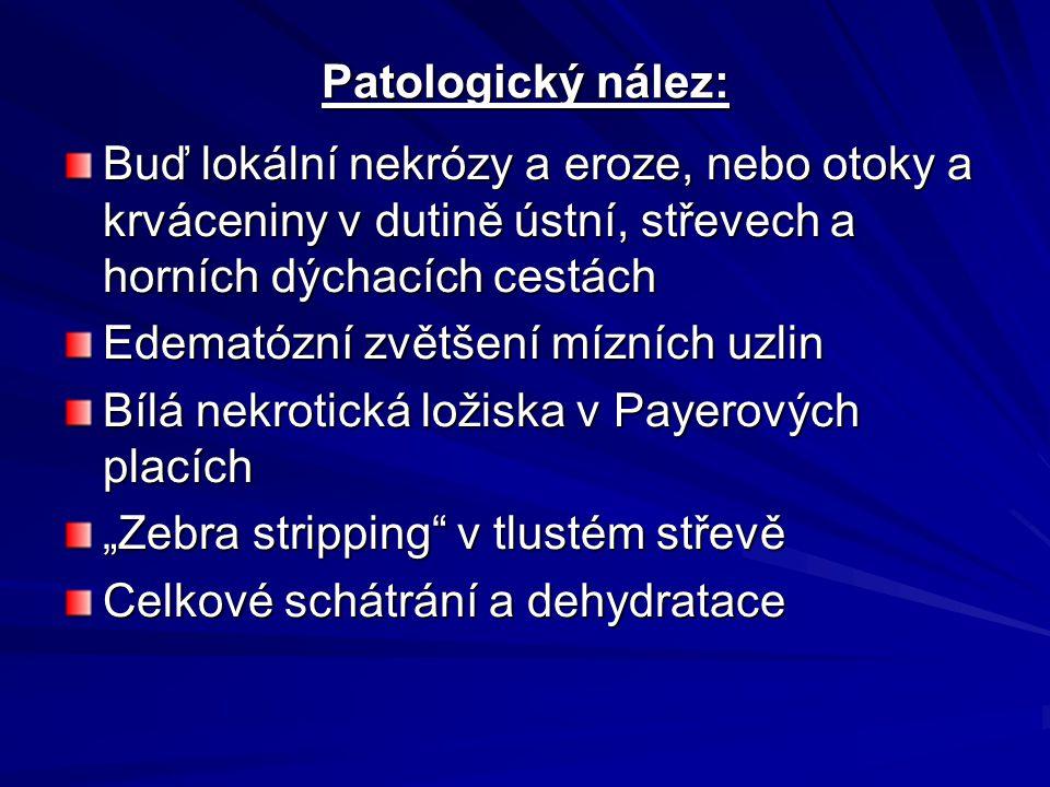 Patologický nález: Buď lokální nekrózy a eroze, nebo otoky a krváceniny v dutině ústní, střevech a horních dýchacích cestách.