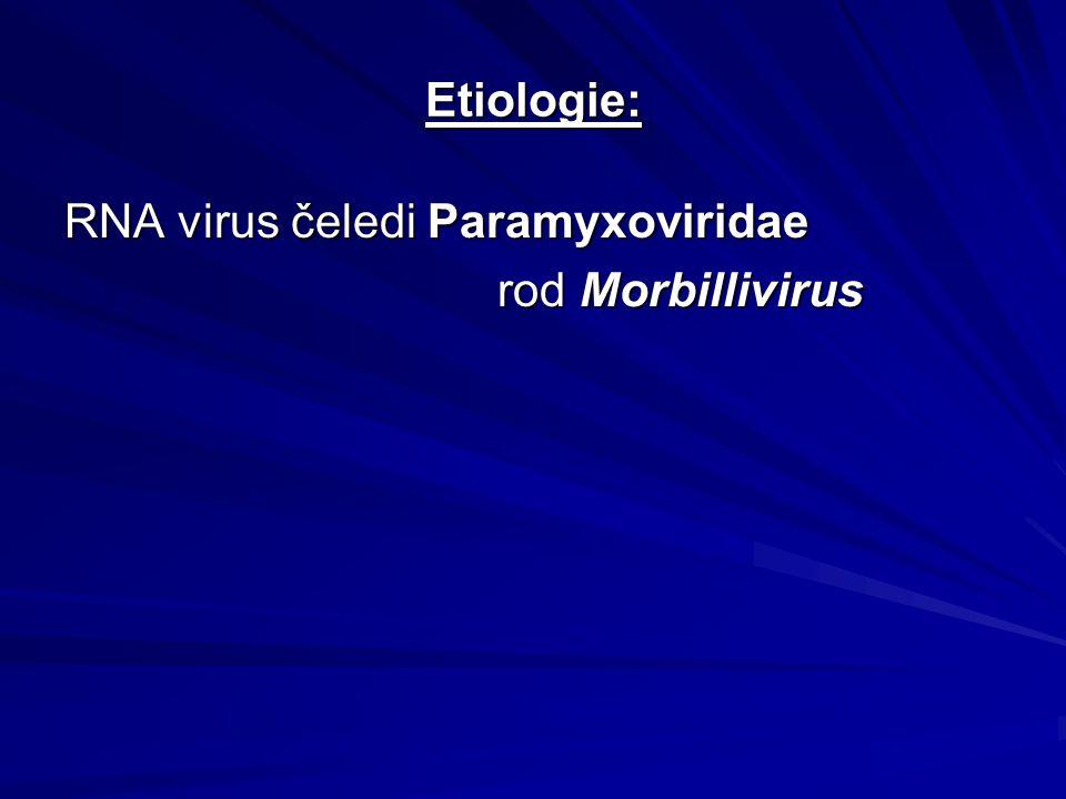 Etiologie: RNA virus čeledi Paramyxoviridae rod Morbillivirus