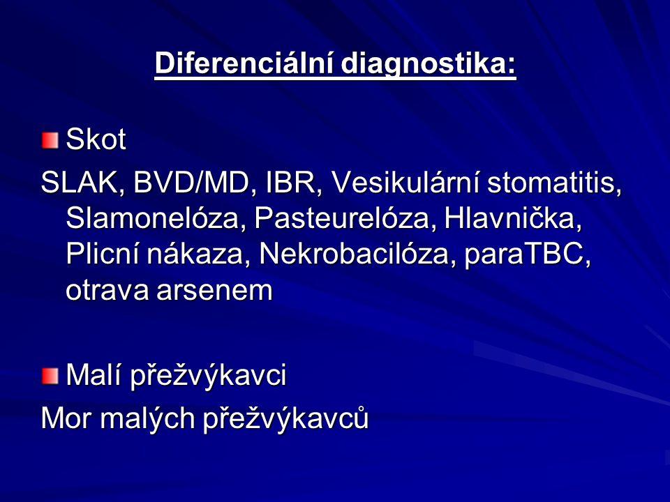 Diferenciální diagnostika: