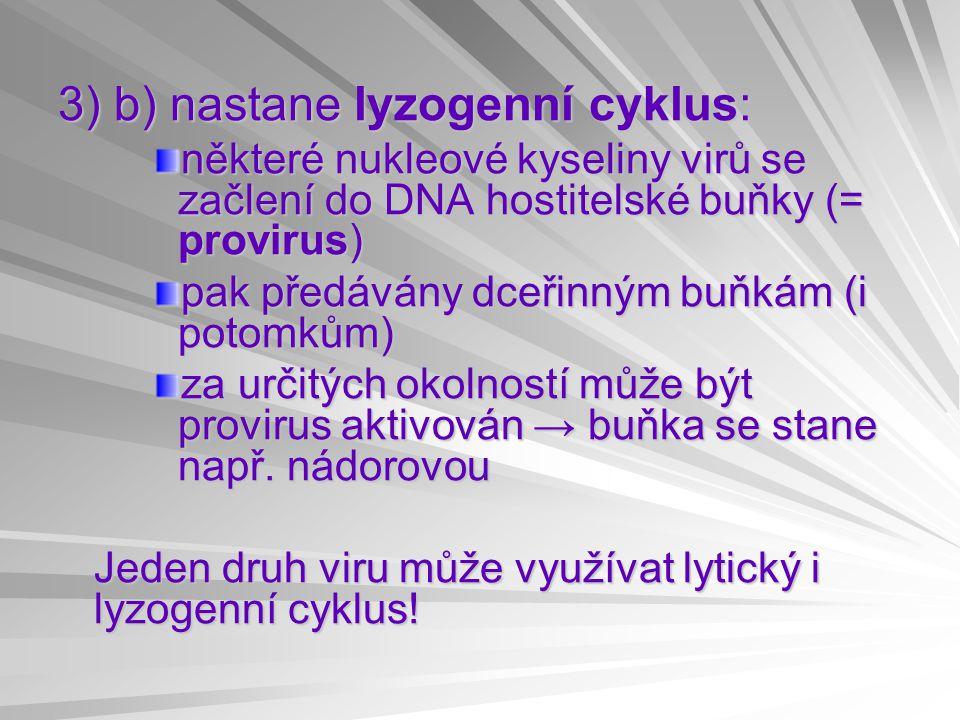 3) b) nastane lyzogenní cyklus: