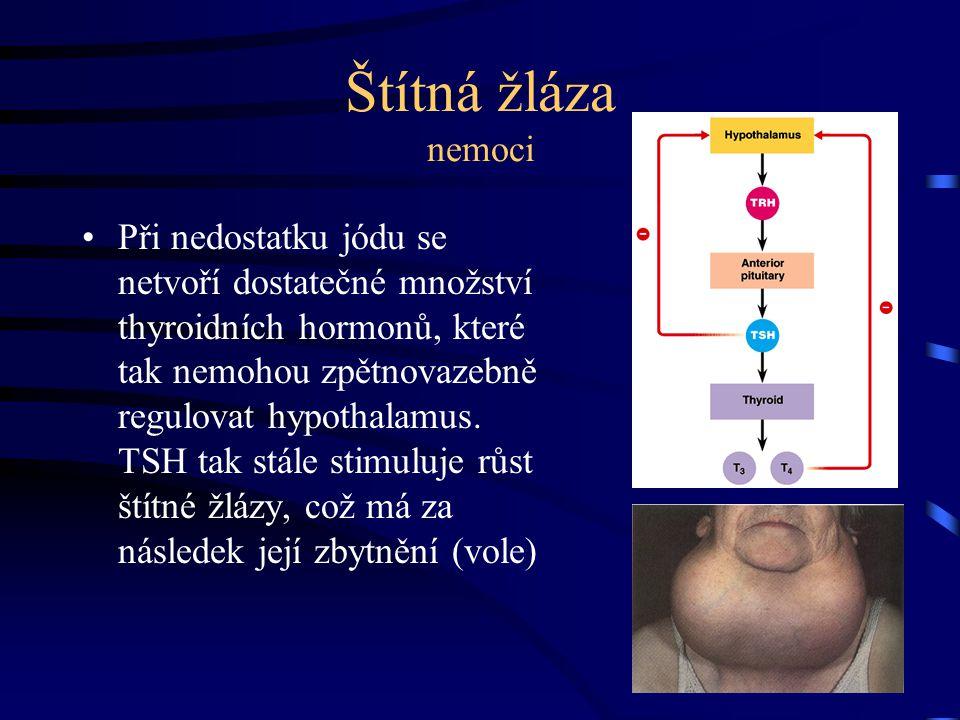 Štítná žláza nemoci