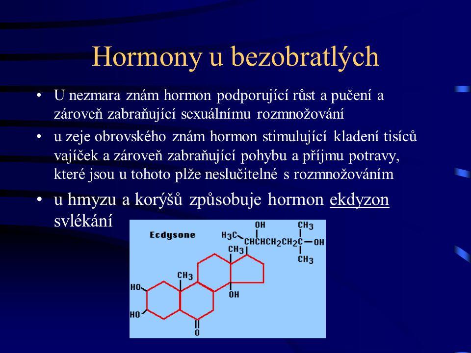 Hormony u bezobratlých