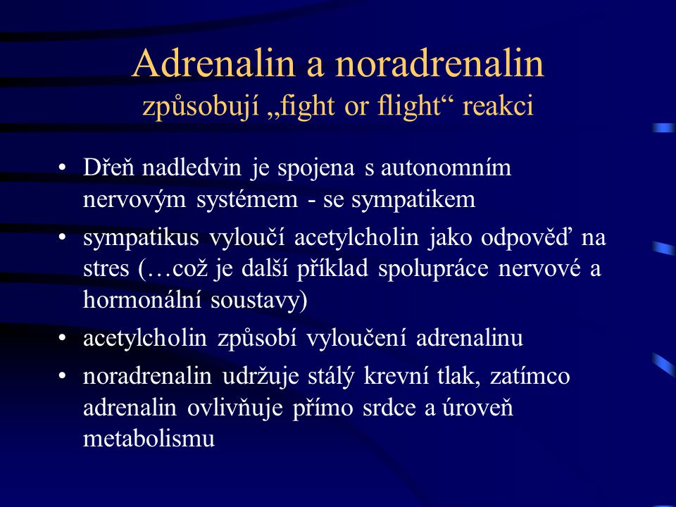 "Adrenalin a noradrenalin způsobují ""fight or flight reakci"