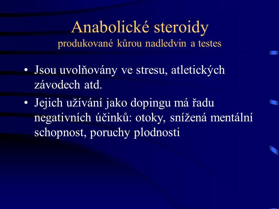 Anabolické steroidy produkované kůrou nadledvin a testes