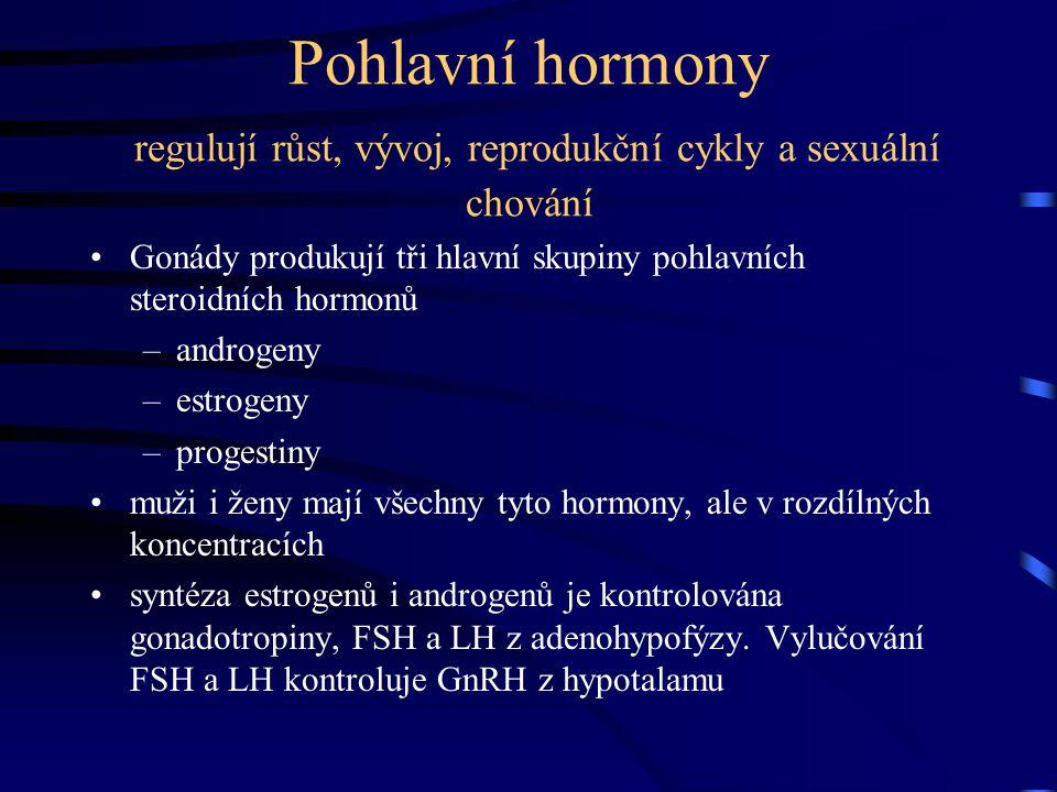 Pohlavní hormony regulují růst, vývoj, reprodukční cykly a sexuální chování