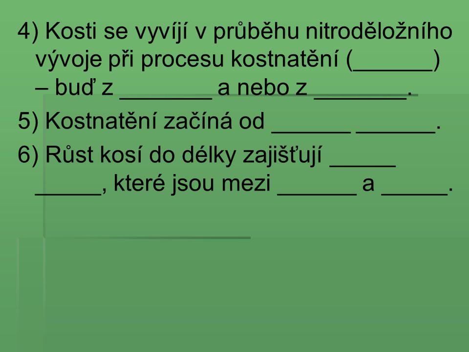 4) Kosti se vyvíjí v průběhu nitroděložního vývoje při procesu kostnatění (______) – buď z _______ a nebo z _______.