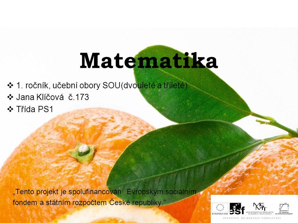 Matematika 1. ročník, učební obory SOU(dvouleté a tříleté)