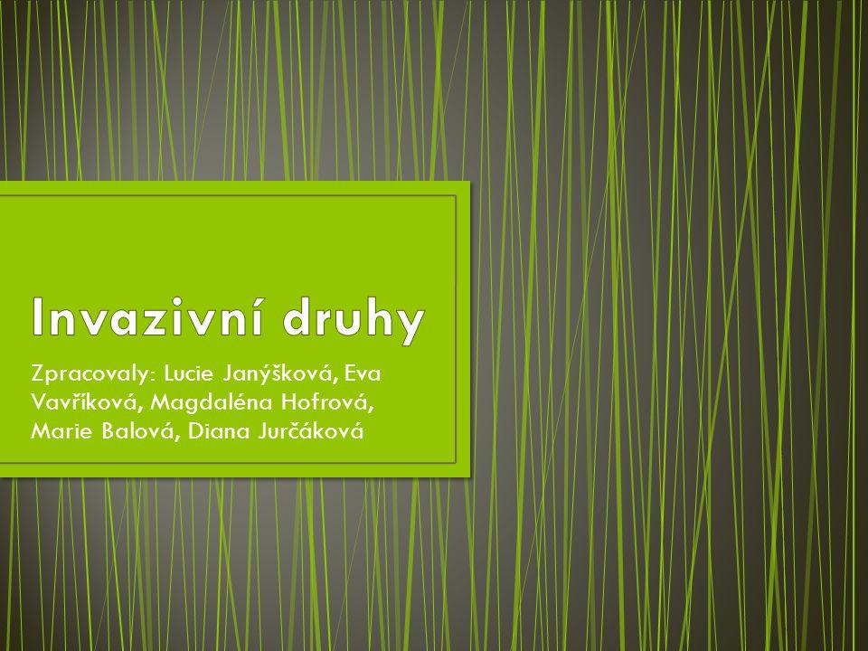 Invazivní druhy Zpracovaly: Lucie Janýšková, Eva Vavříková, Magdaléna Hofrová, Marie Balová, Diana Jurčáková.